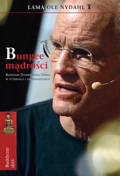 bungee madrosci COVER